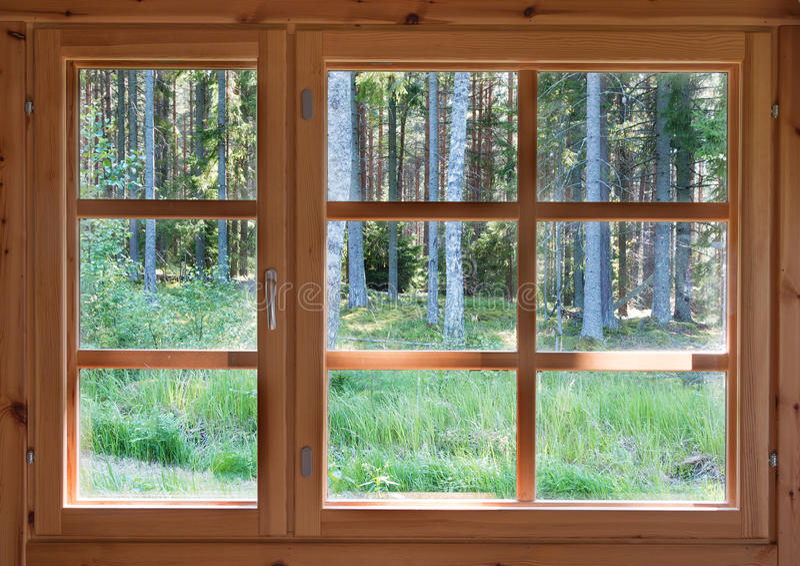 Grön solig sikt av sommarträn i trälandsfönstret royaltyfri foto