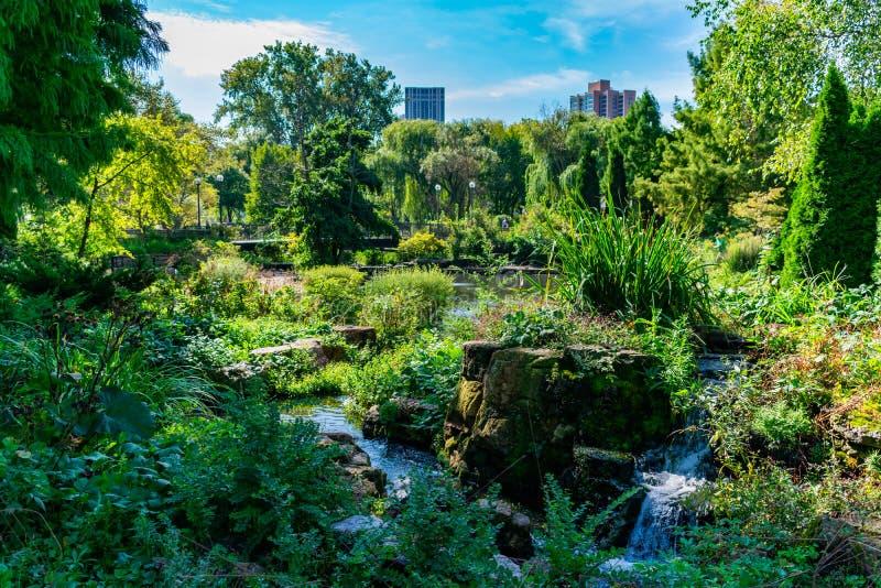 Grön sommarplats med bron och vatten på Lincoln Park Zoo i Chicago royaltyfria foton
