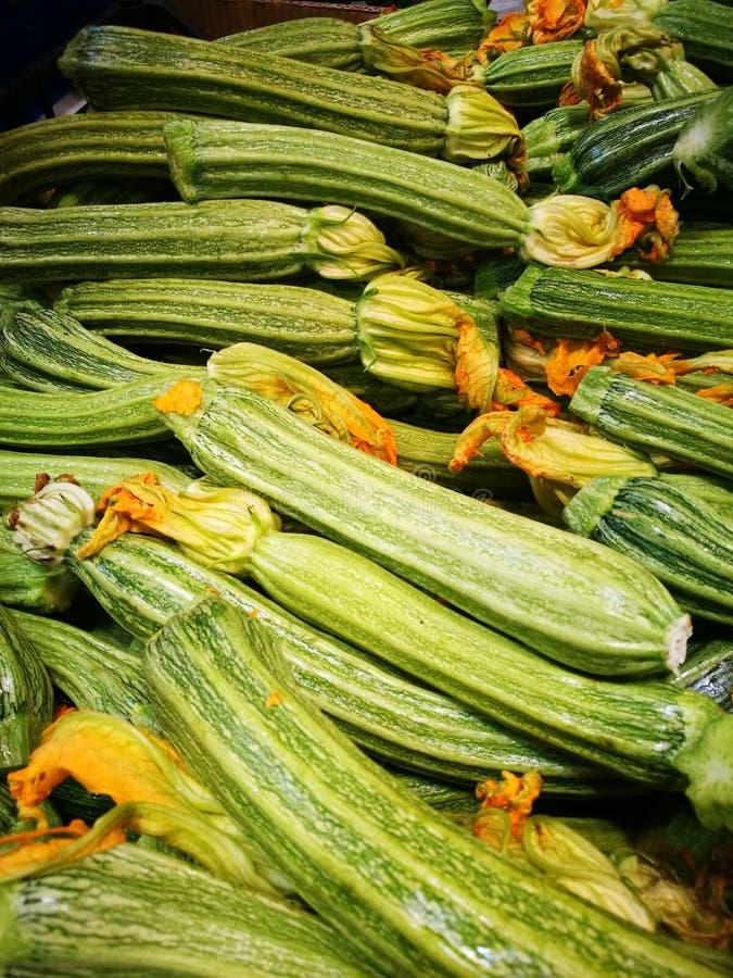 Grön squash med blomningar fotografering för bildbyråer