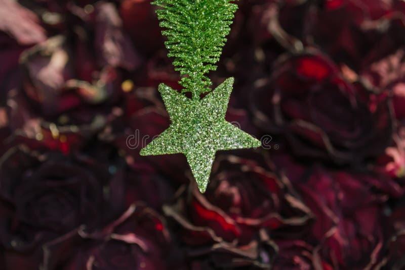 Grön stjärna på röda kronblad arkivbild