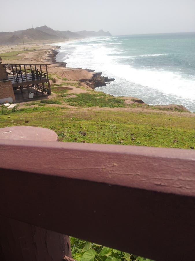Grön strand arkivbilder