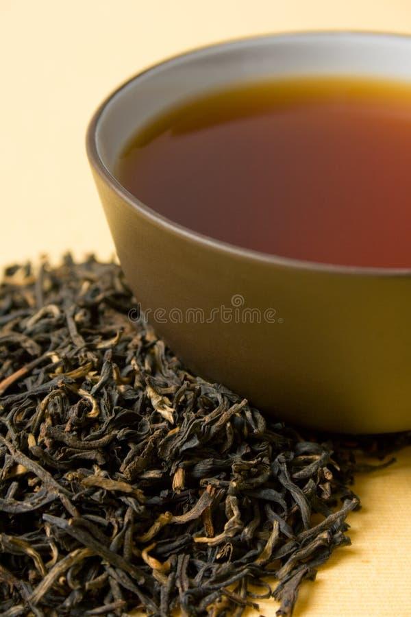 grön tea för kopp royaltyfria foton