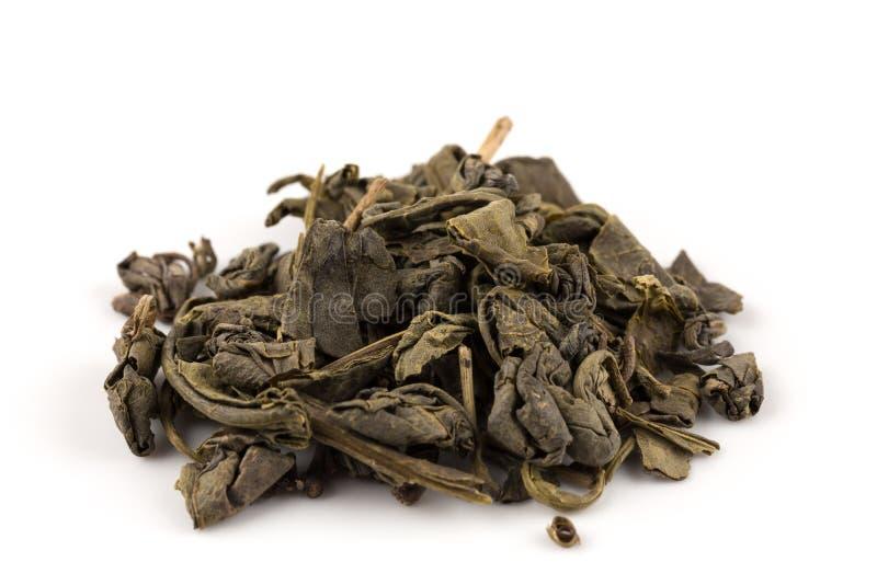 Grön tea för krut royaltyfri bild