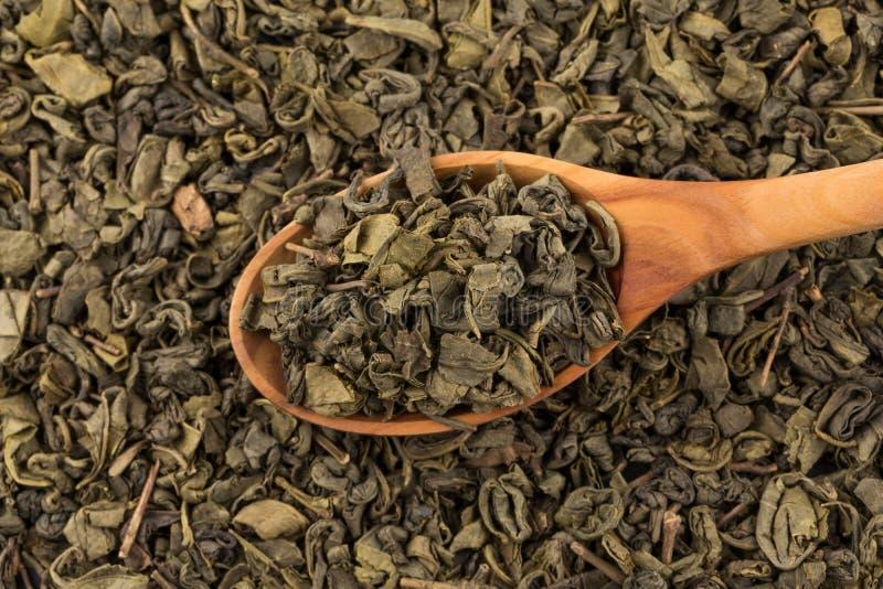 Grön tea för krut royaltyfria bilder