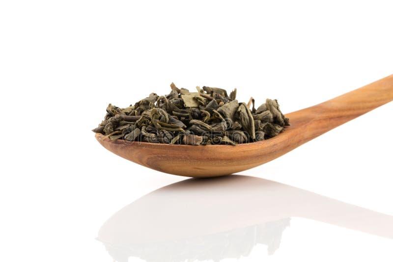 Grön tea för krut royaltyfri foto