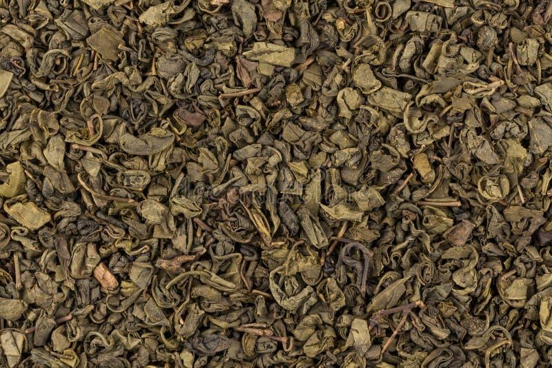 Grön tea för krut royaltyfri fotografi