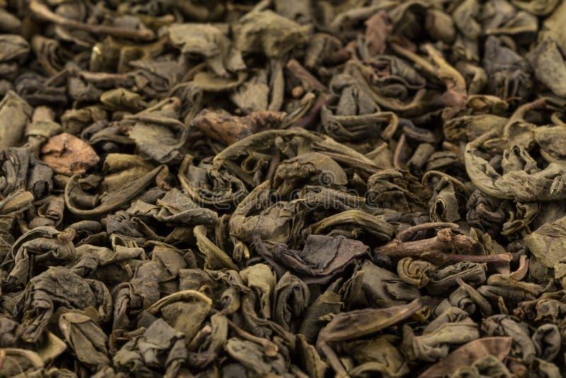 Grön tea för krut fotografering för bildbyråer