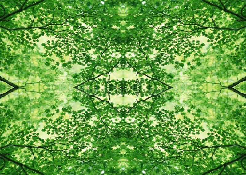 Grön textur | Blom- modell | Designbeståndsdel | Texturerad bakgrund royaltyfri bild