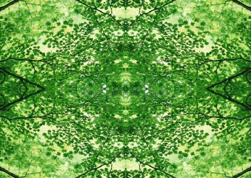 Grön textur | Blom- modell | Designbeståndsdel | Texturerad bakgrund royaltyfri fotografi