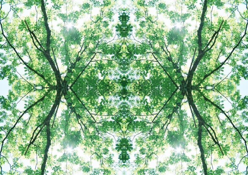 Grön textur | Blom- modell | Designbeståndsdel | Texturerad bakgrund arkivbilder