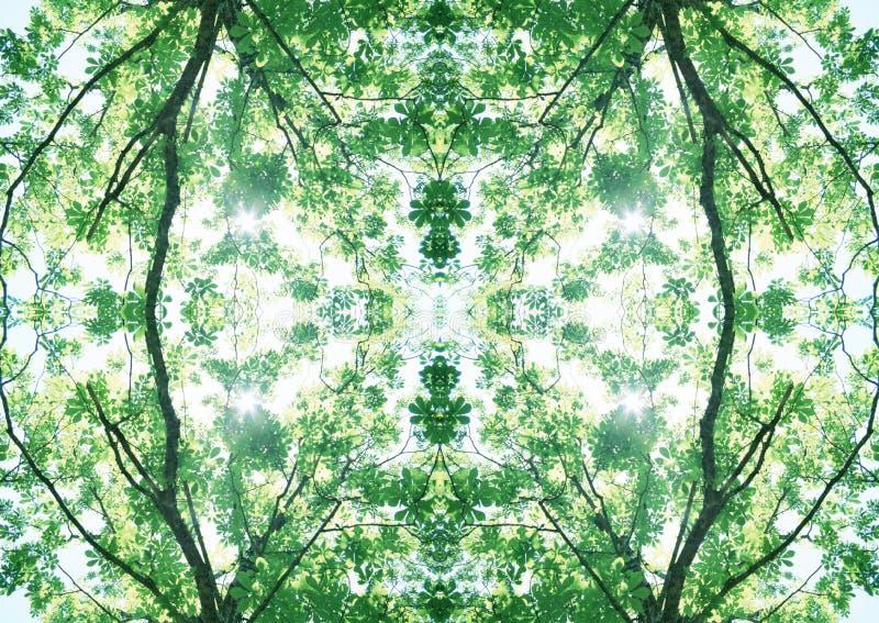 Grön textur | Blom- modell | Designbeståndsdel | Texturerad bakgrund royaltyfri foto