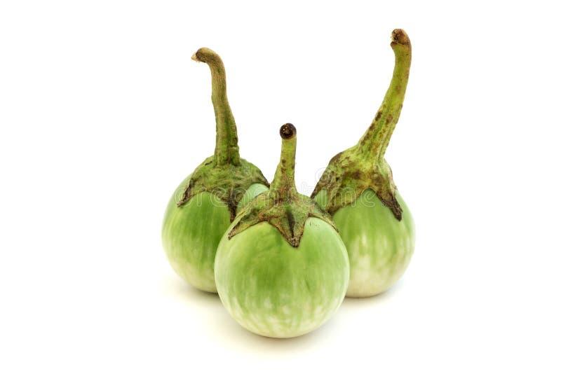 Grön thai aubergine royaltyfria bilder