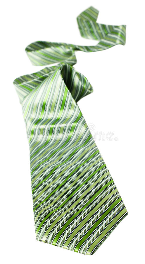 grön tie royaltyfri foto