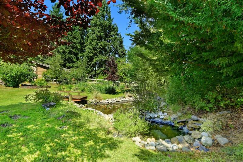 Grön trädgård med dammet Sikt av rabatt med stenar, dekorativa träd och buskar arkivfoton