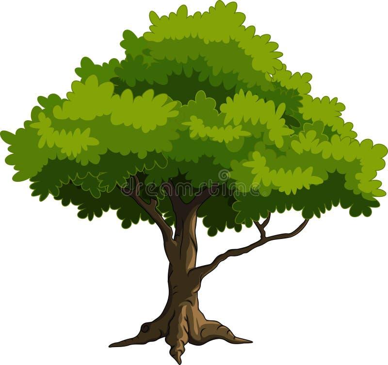 grön trädtecknad film royaltyfri illustrationer