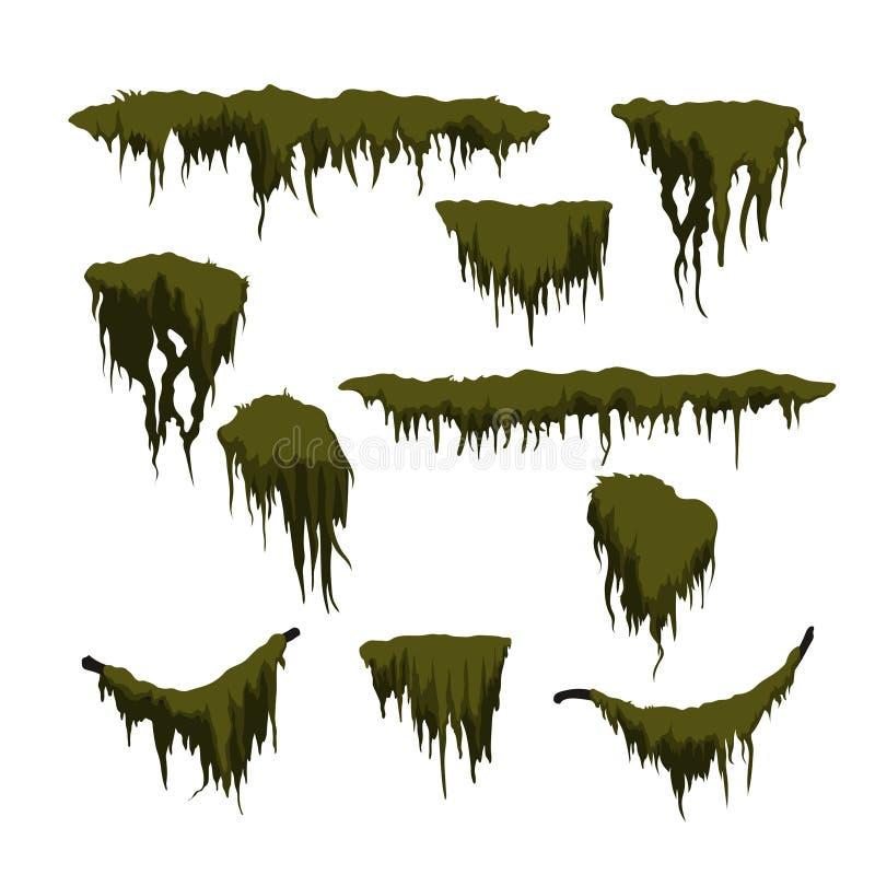 Grön träskmossa på vit bakgrund Skoggräs i tecknad filmstil Isolerad designbeståndsdel Modig älva Träskväxter vektor illustrationer