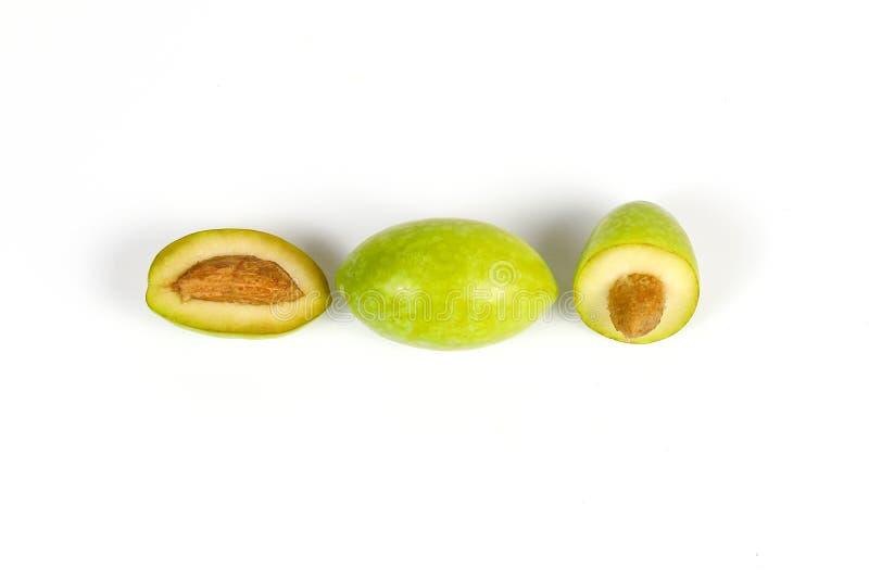 Grön ung oliv arkivfoto