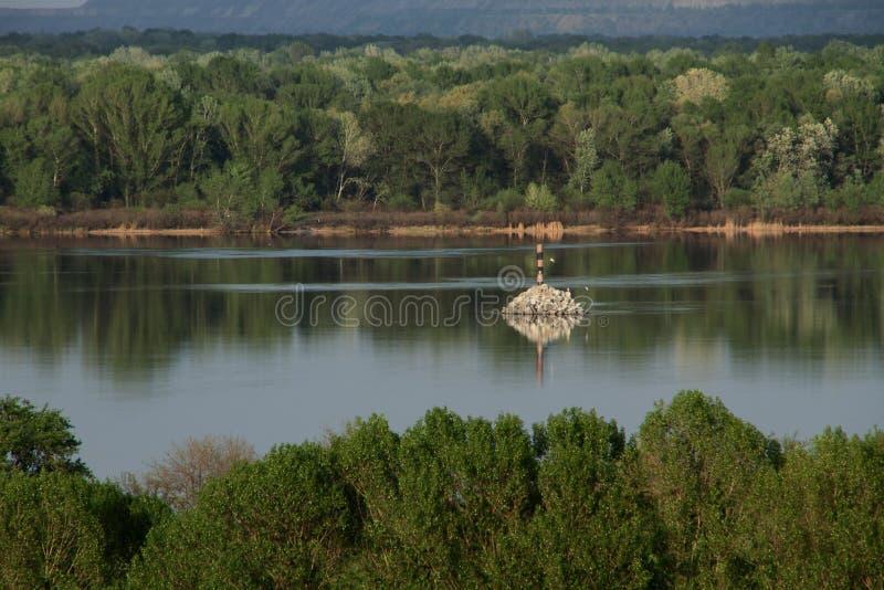 grön vårsikt på floden fotografering för bildbyråer