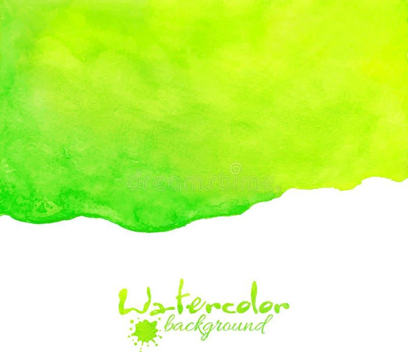 Grön vattenfärgvektorbakgrund royaltyfri illustrationer