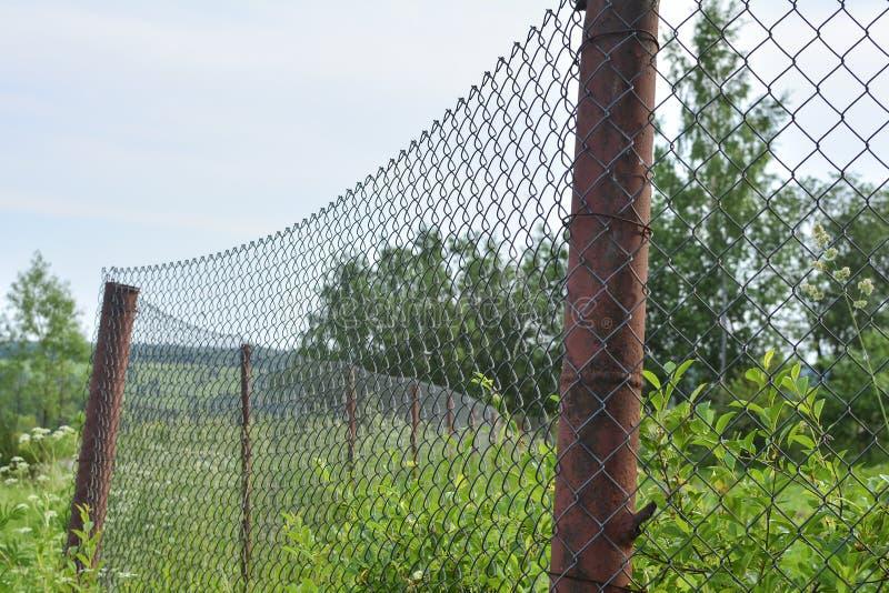 Grön vegetation bak ett staket för metalltrådingrepp Gamla rostiga raster- och metallrör med gräsplaner på en suddig bakgrund Til royaltyfria foton
