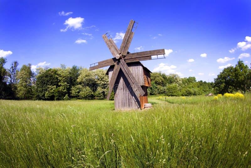 grön windmill för fält royaltyfri foto
