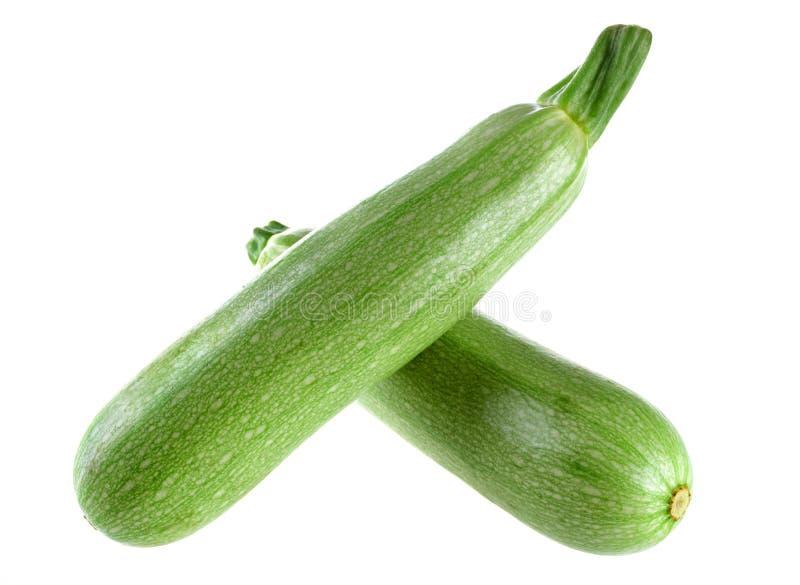 grön zucchini arkivfoto
