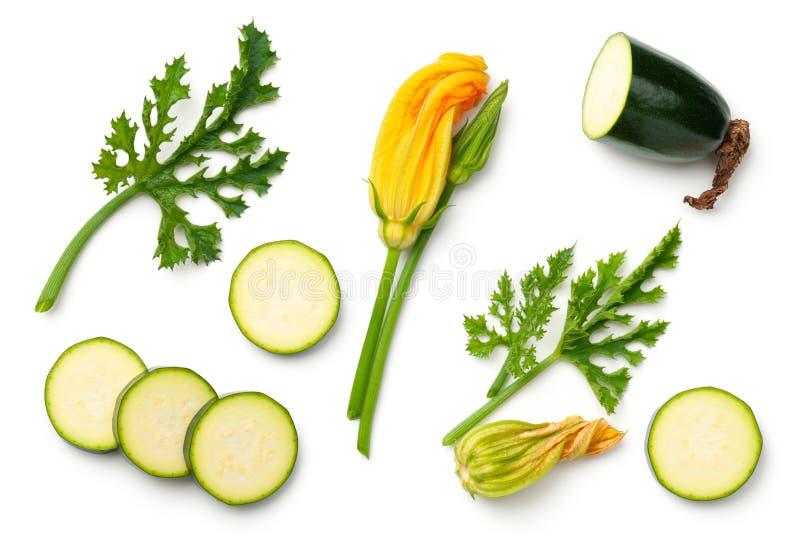 Grön zucchini med bladet och blomman som isoleras på vit bakgrund arkivbild