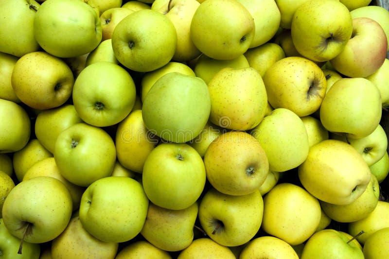 Gröna äpplen på grönsakshandlaren royaltyfria foton