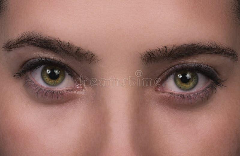 Gröna ögon av den härliga unga flickan fotografering för bildbyråer