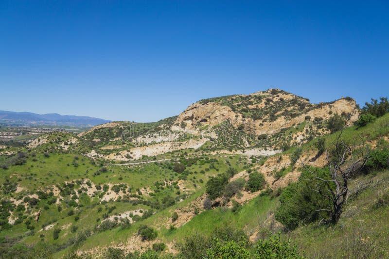 Gröna ökenbackar i Kalifornien royaltyfri fotografi