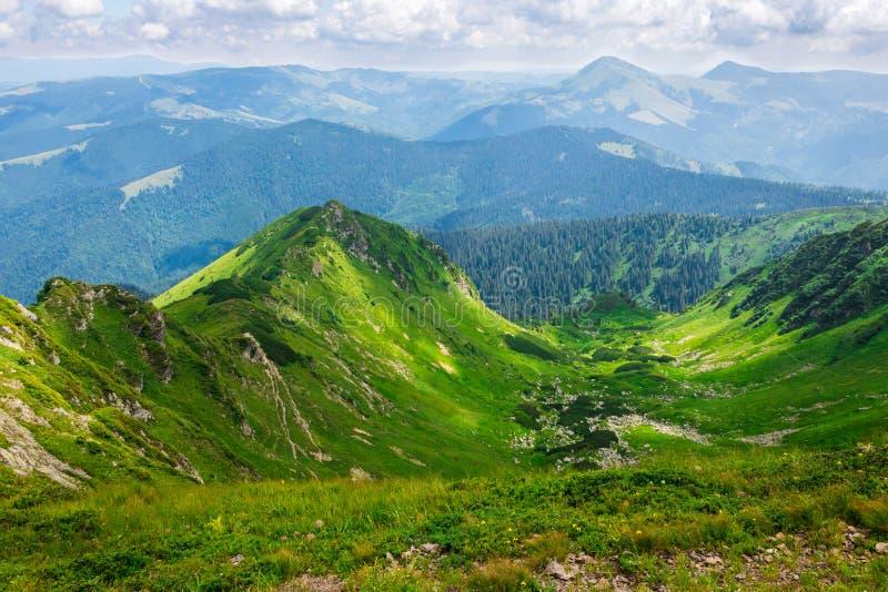 Gröna berg av Ukraina, Carpathians royaltyfri foto