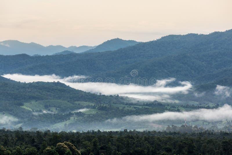 gröna berg för dimma över royaltyfria bilder