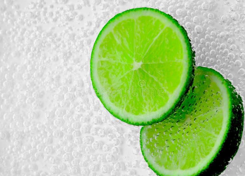 Gröna citrusfruktskivor royaltyfri fotografi
