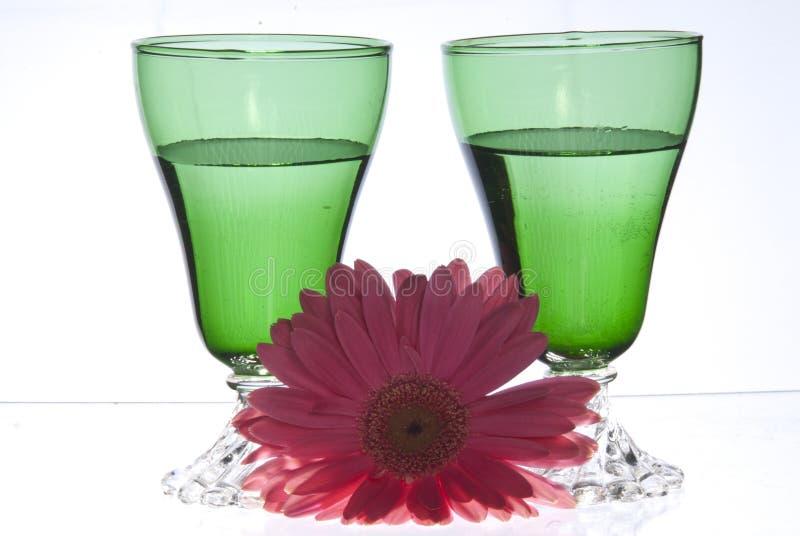 2 gröna exponeringsglas med rosa färgblomman arkivfoto