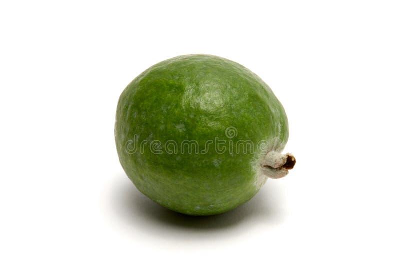 Gröna feijoafrukter på vit bakgrund royaltyfria foton