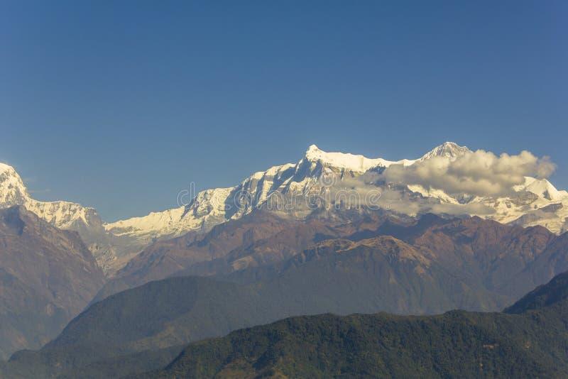 Gröna forested lutningar mot bakgrunden av ökenberg och snöig maxima av Annapurn med vita moln under en klar blått arkivfoton