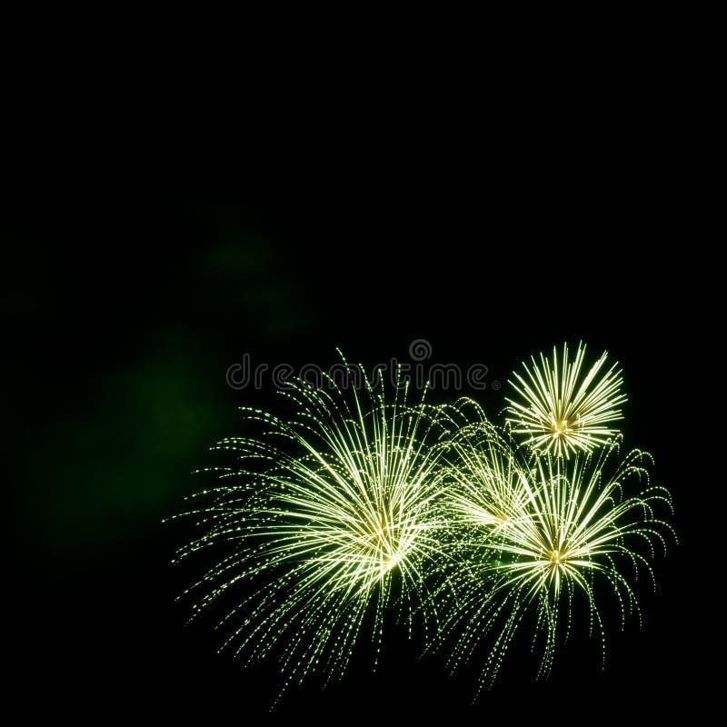 Gröna fyrverkerier gränsar på den svarta himmelbakgrunden med copyspac royaltyfri bild