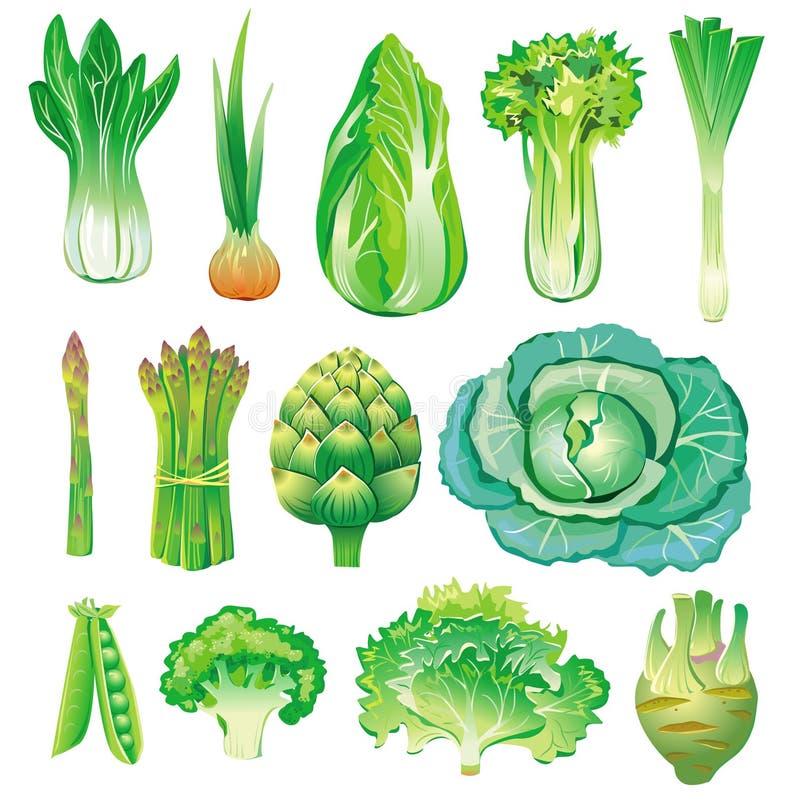 gröna grönsaker stock illustrationer
