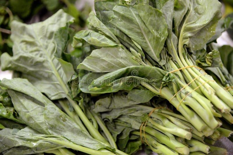 gröna grönsaker royaltyfria bilder