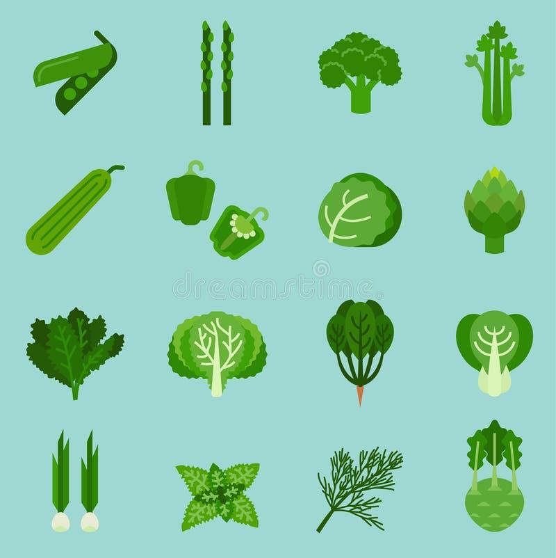 Gröna grönsaker samling, grafisk mat för information, vektorillustration vektor illustrationer