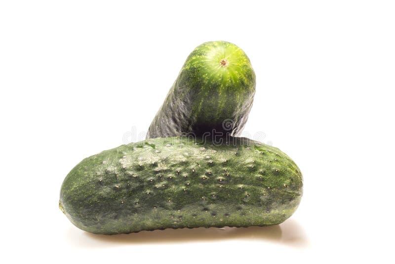 gröna gurkor på en vit bakgrund royaltyfri foto