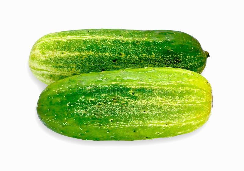 Gröna gurkor på vitbakgrund arkivbild