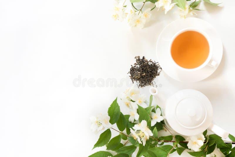 Gröna jasminte- och jasminblommor, kopp av grönt te på vit Top beskådar teatime arkivbilder