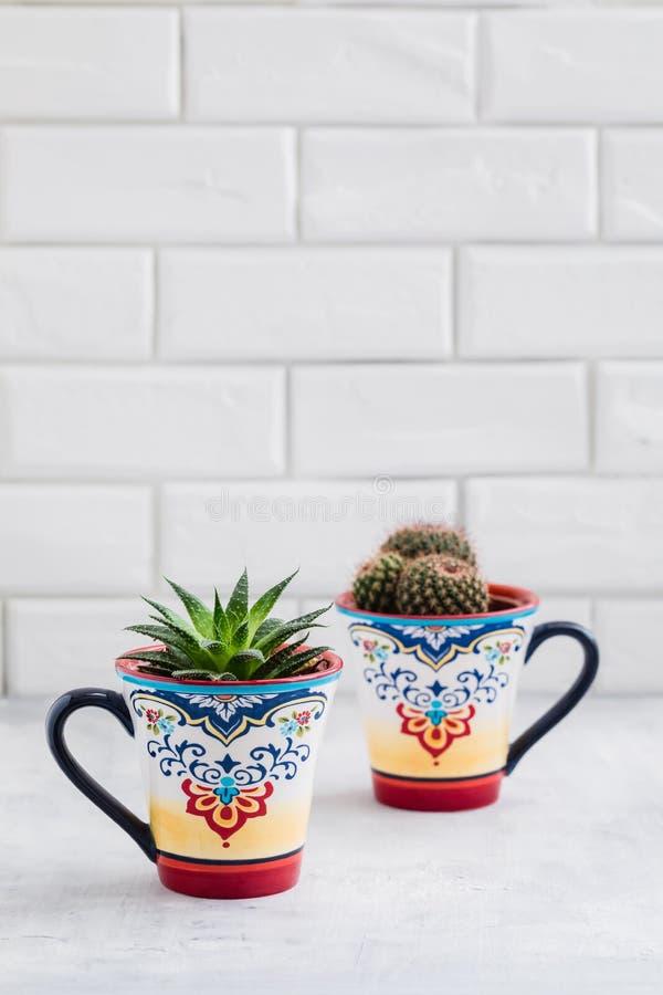Gröna kakturs i färgrika orientaliska koppar, hem- garneringbegrepp för kaktus arkivbilder