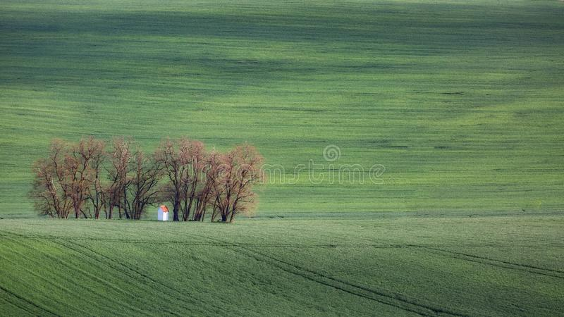 Gröna krabba kullar i södra Moravia, Csezh republik arkivbilder