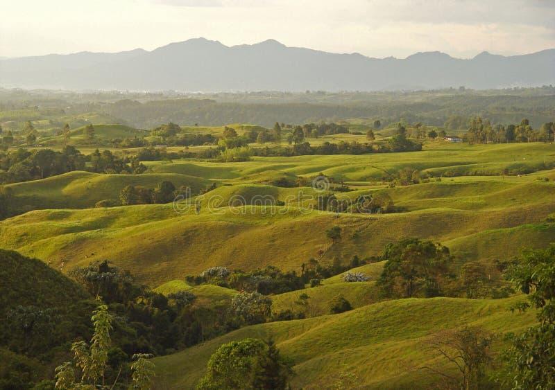 gröna kullar arkivfoton