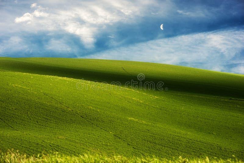 Gröna kullar och bakgrund för blå himmel royaltyfri foto