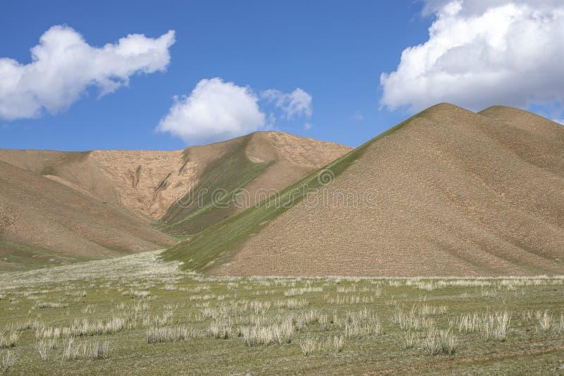 Gröna kullar och betar mot den blåa himlen med moln Resor kyrgyzstan arkivbild