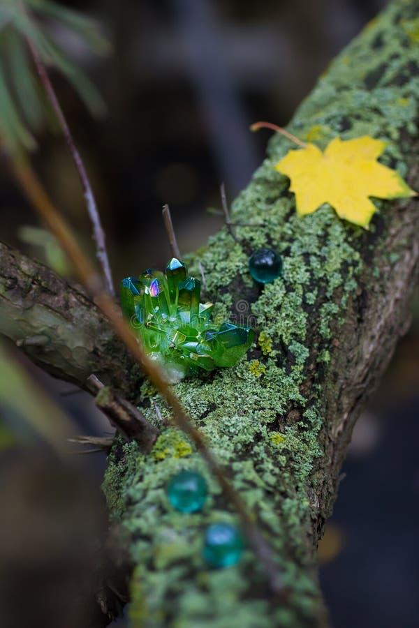 Gröna magiska kristaller för gåta i skogen royaltyfria foton