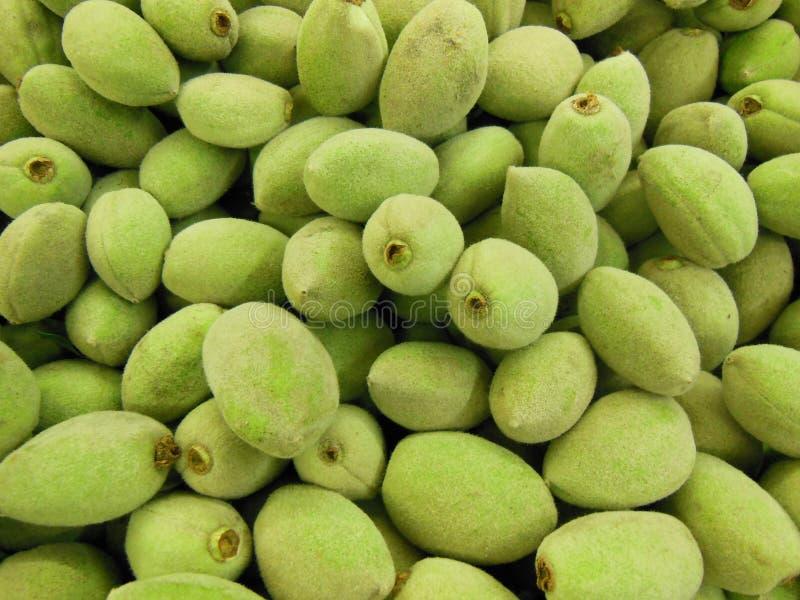 Gröna mandlar royaltyfri fotografi